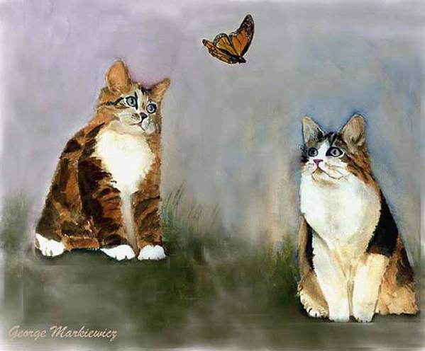 Cats Butterfly Art Print featuring the print Whatzit by George Markiewicz