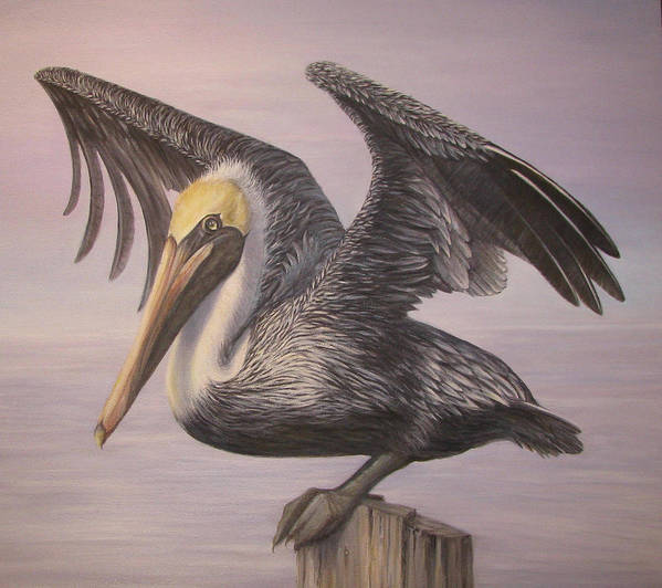 Pelican Art Print featuring the painting Pelican 2 Wings Spread by Judy Merrell