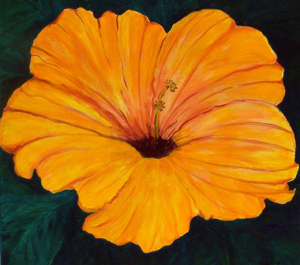 Flowers Art Print featuring the painting Solid Gold by Marcia Paige