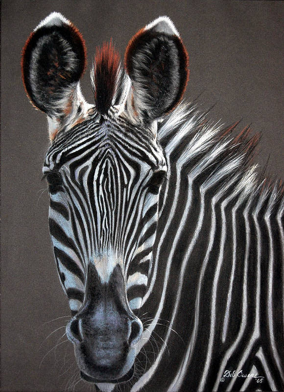 Wildlife Art Print featuring the painting African Beauty by Deb Owens-Lowe