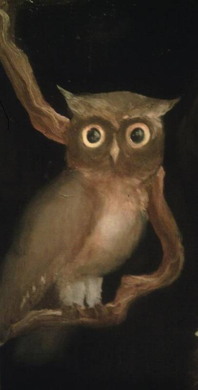 Owl Art Print featuring the painting Just Lookin by Paul Morgan