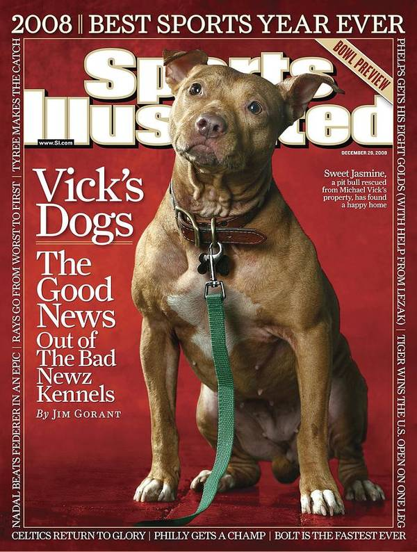Magazine Cover Art Print featuring the photograph Sweet Jasmine, Michael Vicks Pit Bull Dogs Sports Illustrated Cover by Sports Illustrated