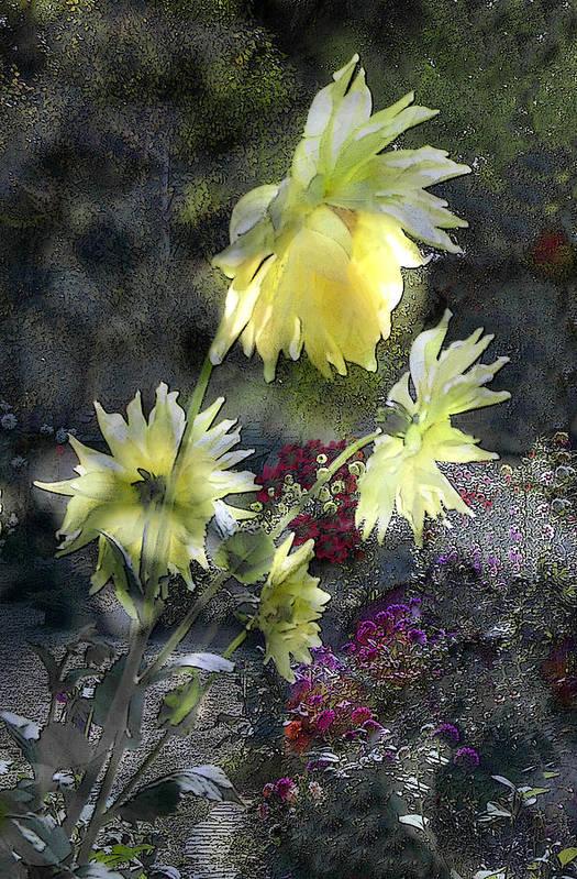 Sun Flower Art Print featuring the digital art Sunflower Dream by Tom Romeo