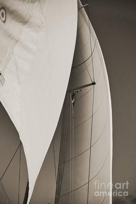 Sails by Dustin K Ryan
