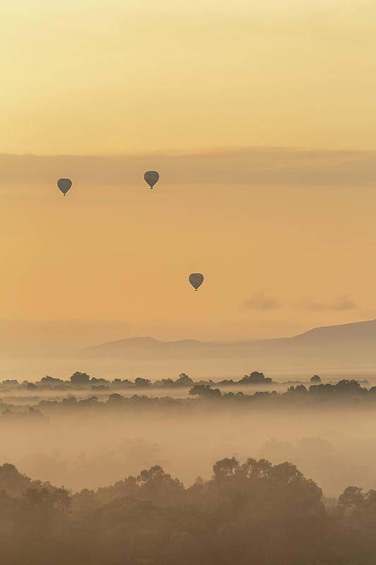 Hot Air Balloons Over the Mara by Jennifer Stinson