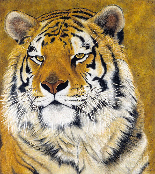 Lawrence Supino Art Print featuring the painting Kato by Lawrence Supino