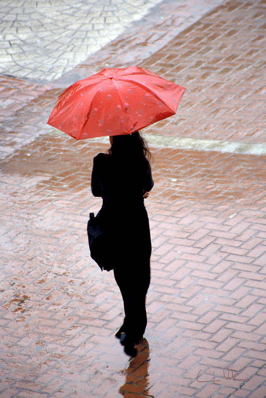 Rain Art Print featuring the photograph Red 2 - Umbrellas Series 1 by Carlos Alvim