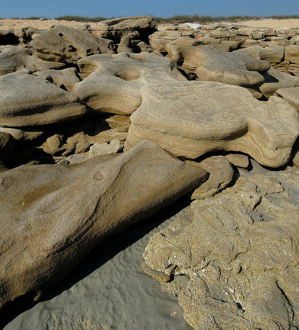Eroded Beach Rocks At Low Tide. Art Print featuring the photograph Eroded Beach Rocks. by David Campione