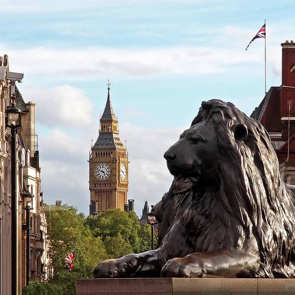 Trafalgar Square Lion with Big Ben by Gill Billington