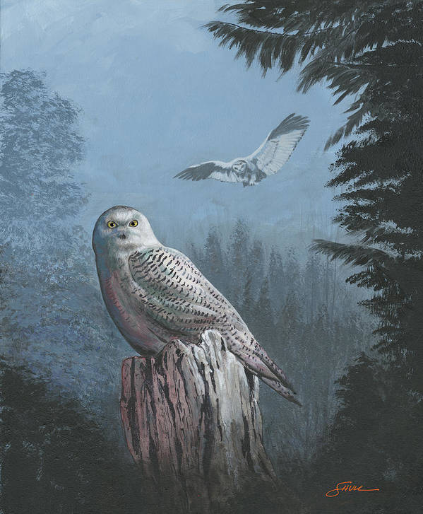 #harold Shull Art Print featuring the painting Snowy Owl by Harold Shull