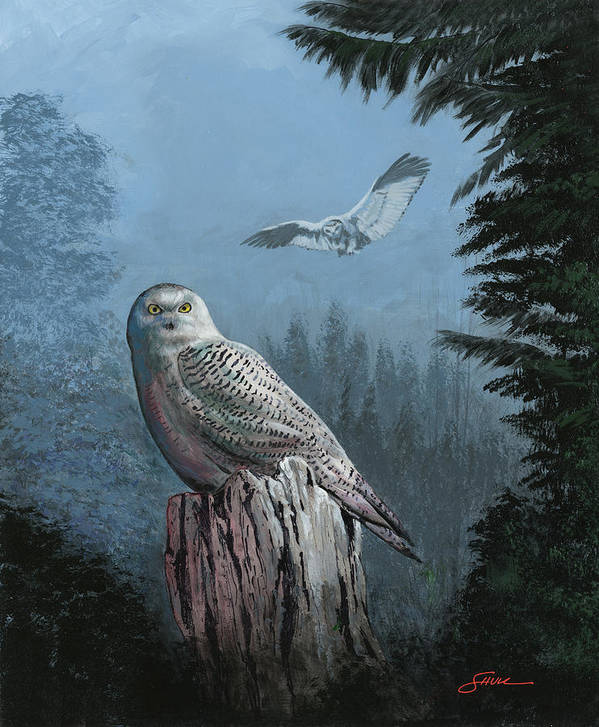 #snowy Owl Art Print featuring the painting Snowy Owl Resting by Harold Shull