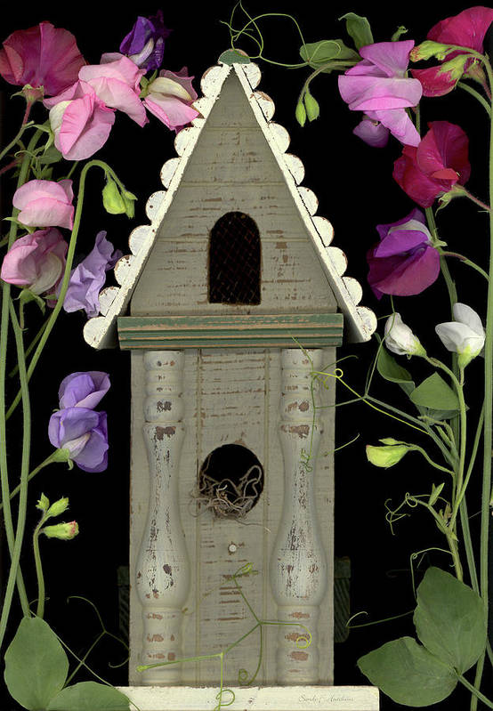Art Print featuring the photograph Welcome Home by Sandi F Hutchins