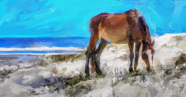 Cumberland Island Pony Horse Art Print featuring the digital art Cumberland Pony by Scott Waters
