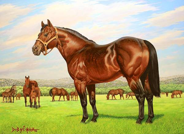 Quarter Horse Art Print featuring the painting King P-234 No.two by Howard Dubois