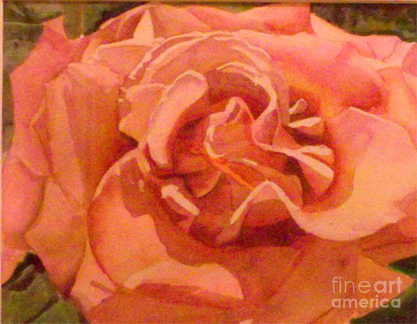 Rose Art Print featuring the painting Pink Rose by Patricia Halstead