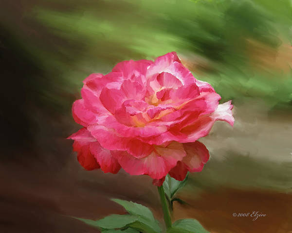 Rose Art Print featuring the painting Rose Alone by Elzire S