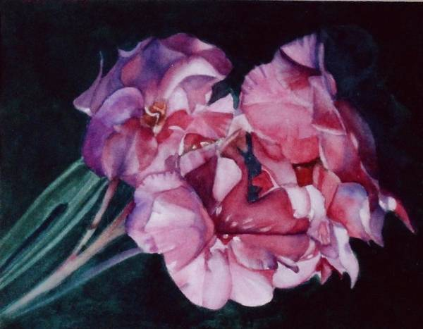 Flowers Art Print featuring the painting Oleander by Patricia Halstead