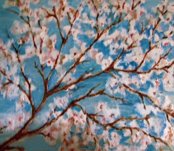 Blossoms Art Print featuring the painting Cherry Blossoms by Patricia Halstead