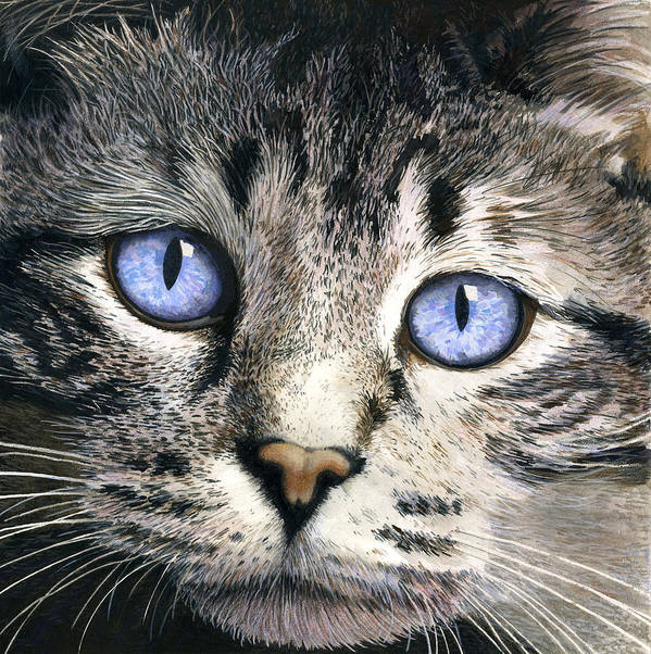 Cat Art Print featuring the painting The Eyes Have It by Ted Head