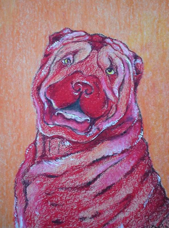 Potrait Art Print featuring the drawing The Dog by Paulose Joseph
