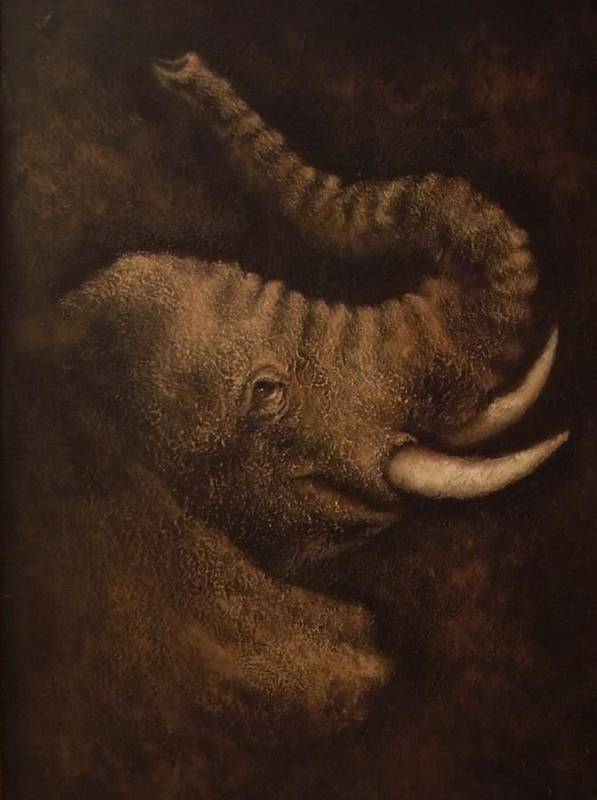 Elephant Art Print featuring the mixed media Young Elephant Portrait by Joann Shular