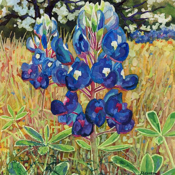 Early Bloomers by Hailey E Herrera