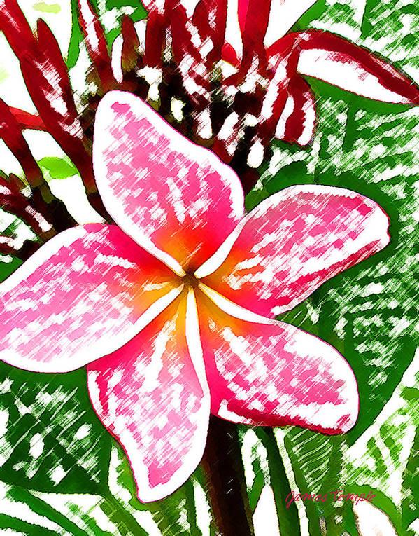 Plumeria Art Print featuring the digital art Plumeria by James Temple