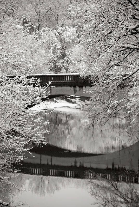 Snow Art Print featuring the photograph Winter Wonderland by Jessica Wakefield