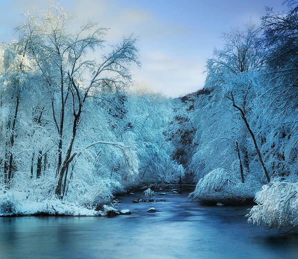 Winter Print featuring the photograph Winter Wonderland by Thomas Schoeller
