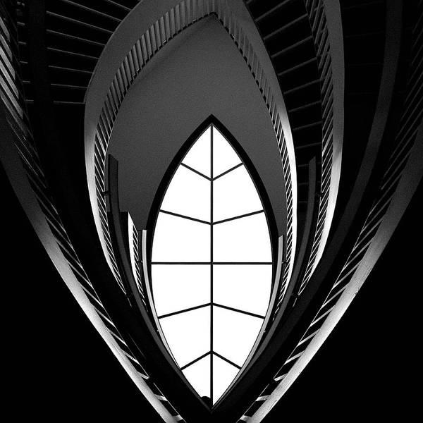 Chicago Art Print featuring the photograph Curves by Chunsum Choi