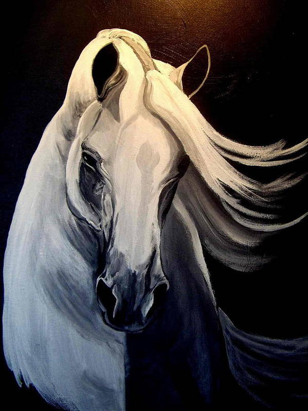 Euine Art Print featuring the painting Andalusian Stallion by Glenda Smith