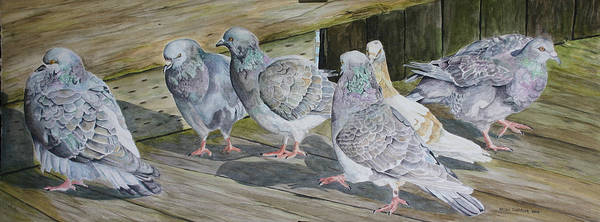 Pigeons Art Print featuring the painting Gossiping by Helen Shideler