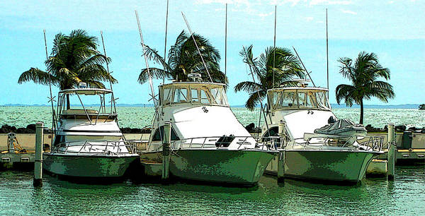 Boats Art Print featuring the photograph Tree Boats by Richard Gerken