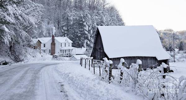 Virginia Art Print featuring the photograph Winter In Virginia by Benanne Stiens