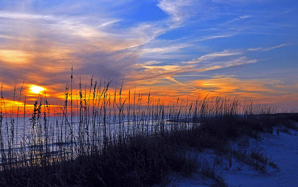 Sunset Art Print featuring the photograph Florida Sunset by Stefan Eberhard