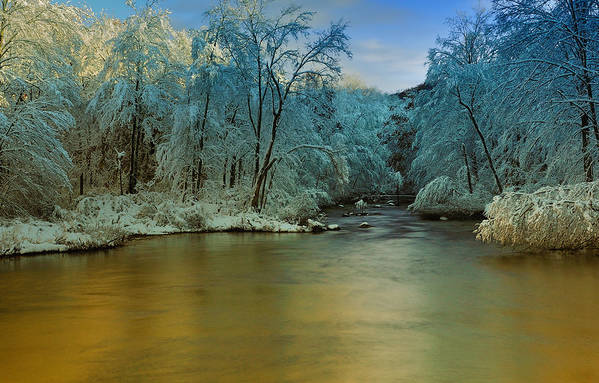 Winter Art Print featuring the photograph Light After The Storm by Thomas Schoeller