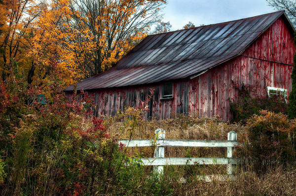 Barn Print featuring the photograph Berkshire Autumn - Old Barn Series  by Thomas Schoeller