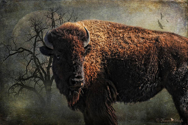 Buffalo Art Print featuring the photograph Buffalo Moon by Karen Slagle