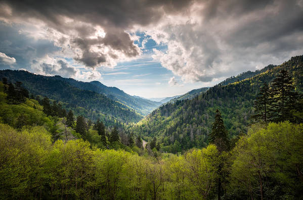 Great Smoky Mountains Print featuring the photograph Great Smoky Mountains Landscape Photography - Spring At Mortons Overlook by Dave Allen