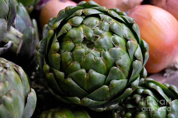 Vegetable Art Print featuring the photograph Artichoke by Camille Lyver