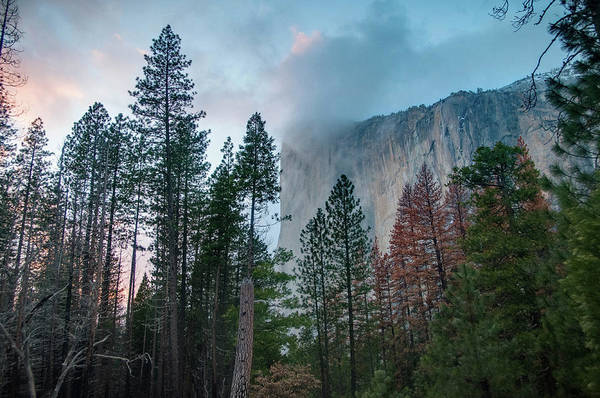 �2017conniecooper-edwards Art Print featuring the photograph Cloudy Sunset On El Capitan by Connie Cooper-Edwards