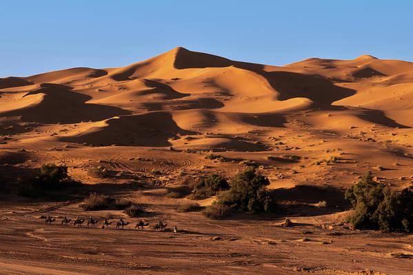 Sand Art Print featuring the photograph A Caravan In The Desert by Claudio Maioli