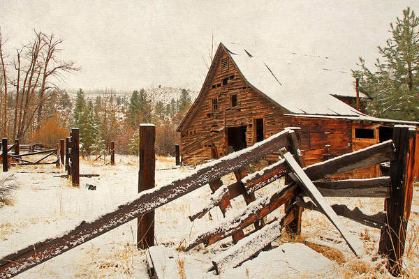 Barns Art Print featuring the photograph Surviving The Elements by Donna Kennedy