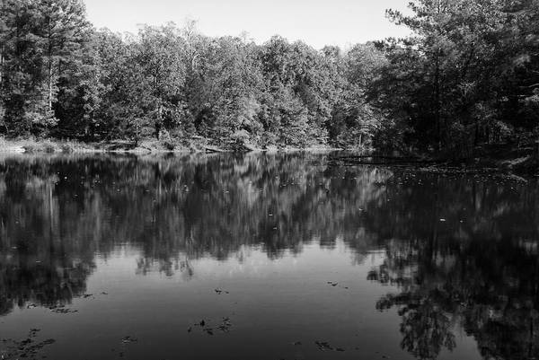 Land Between The Lakes Art Print featuring the photograph Colorless Reflection by Wayne Stacy