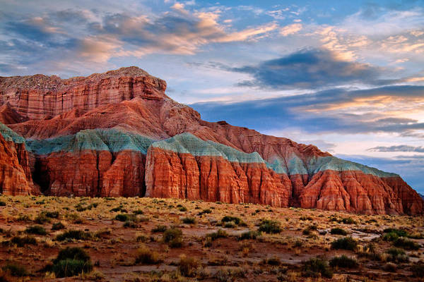 Desert Art Print featuring the photograph Wild Horse Mesa by Utah Images