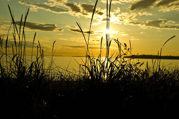 Art Print featuring the photograph Birch Bay Sunset by JK Photography