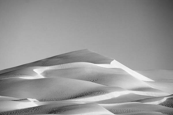 Black & White Print featuring the photograph Gordon Wells Dunes by Peter Tellone