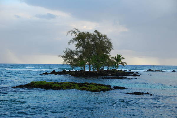 Island Art Print featuring the photograph Island At Carlsmiths by Steven Rice