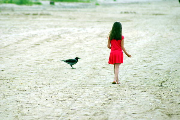 Coast Art Print featuring the photograph The Girl And The Raven by Vadim Grabbe