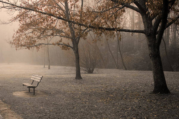 Park Art Print featuring the photograph Waiting For God by Ayesha Lakes